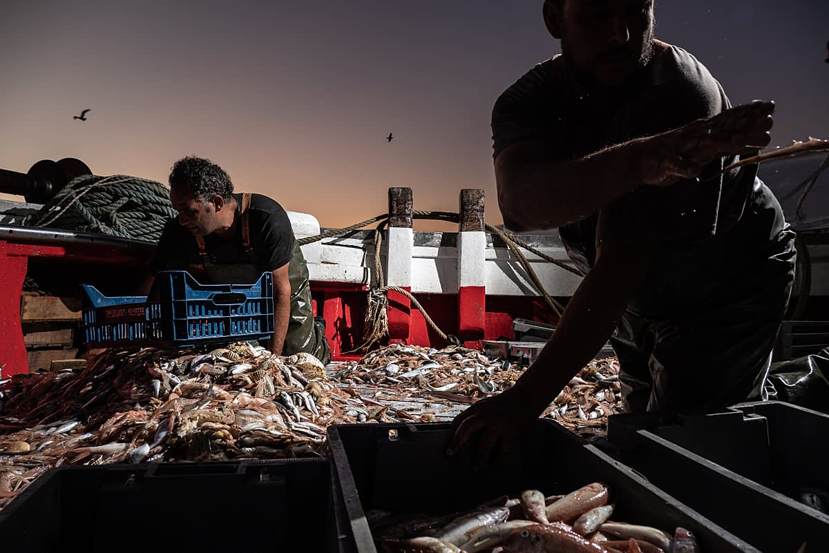 Workers onboard the fishing boat Fasilis sort the catch by type, dividing it between fish with commercial value and useless by-catch. Greece, 2020. Selene Magnolia / We Animals Media