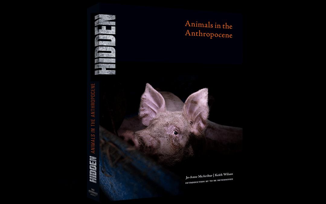 Announcing HIDDEN: Animals in the Anthropocene