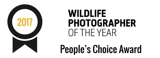 Wildlife Photographer of the Year | People's Choice Award (2017)