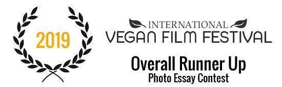 International Vegan Film Festival | Photo Essay Contest - Overall Runner Up (2019)