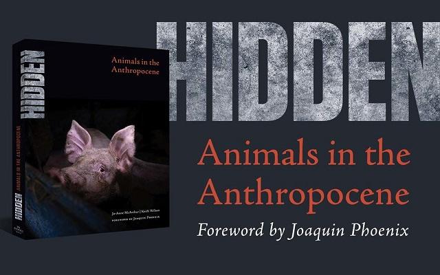 HIDDEN: Animals in the Anthropocene (We Animals Media, 2020)