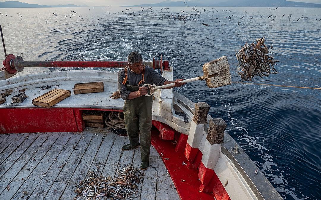New Stock: Mediterranean Fishing – Greece, 2020